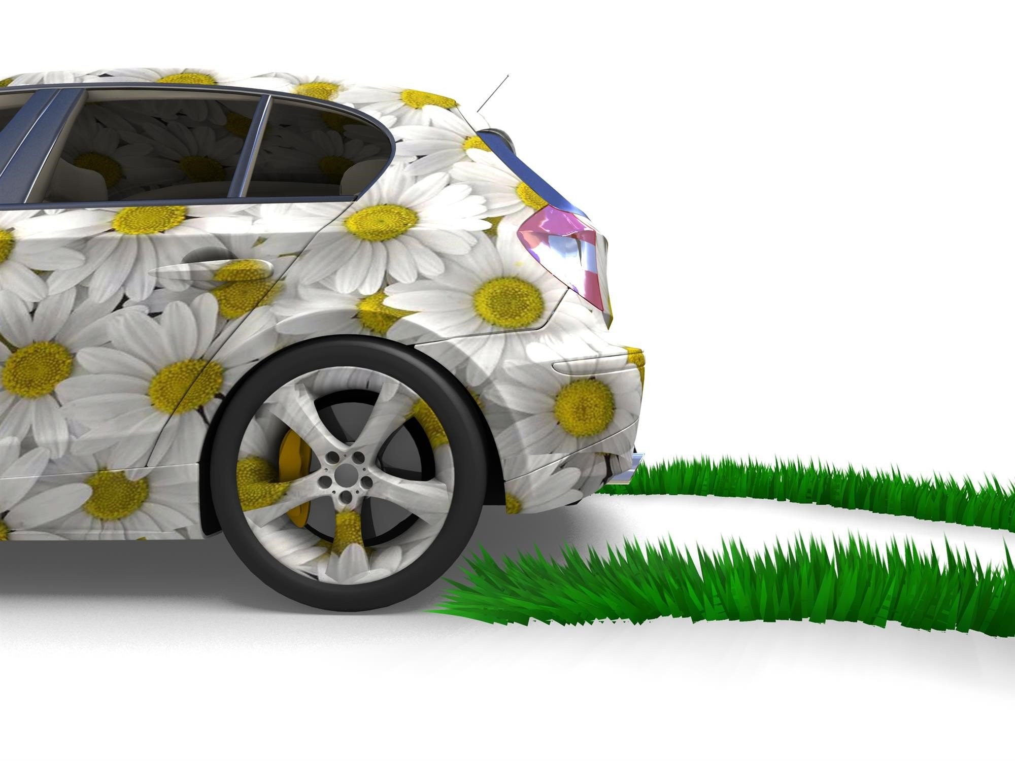 Car with daisies on them